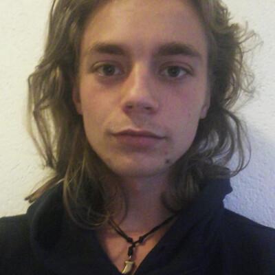 Dante zoekt een Kamer / Studio / Appartement in Leiden